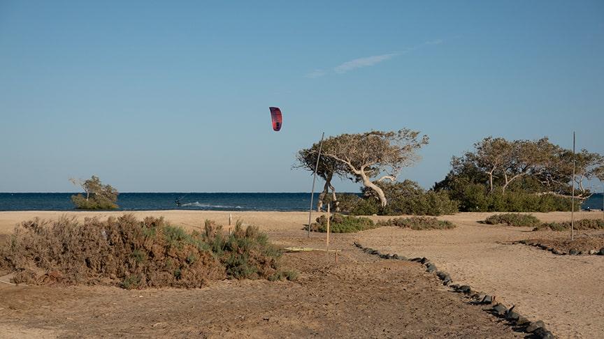 Kiter zwischen Mangroven im Wadi Lahami Einleitung Reiseblog Ägypten