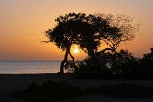 Ägypten Reiseblog 2020 – Teil 3 5